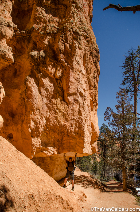 Bryce Canyon 2014 - ER (11 of 12)