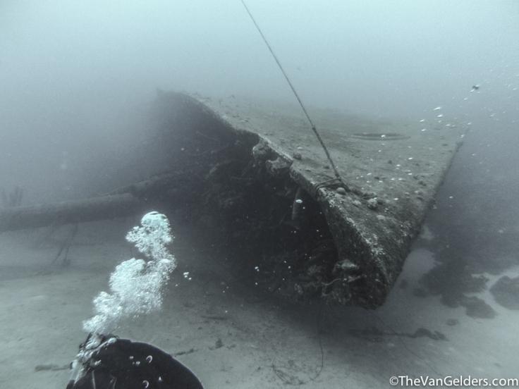 Dive Cert (2 of 5)