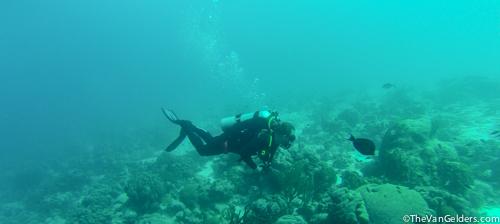 Bonaire 2015e (1 of 1)-2