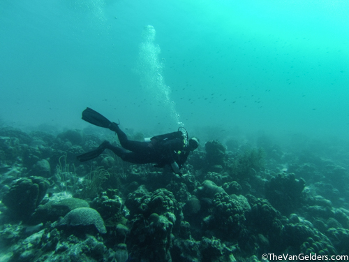 Bonaire 2015e (1 of 1)-3