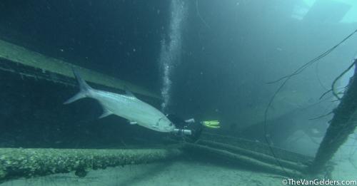 Fish Finder (8 of 14)